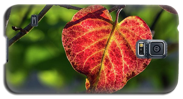 Galaxy S5 Case featuring the photograph The Autumn Heart by Bill Pevlor