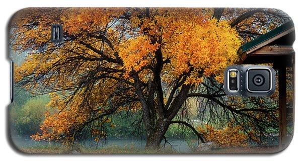 The Autumn Tree Galaxy S5 Case