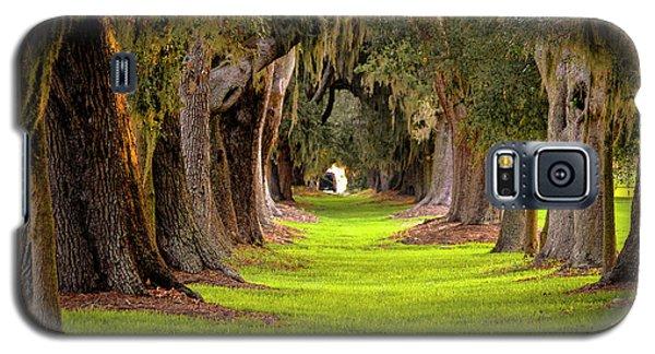 The Avenue Of Oaks 4 St Simons Island Ga Art Galaxy S5 Case by Reid Callaway