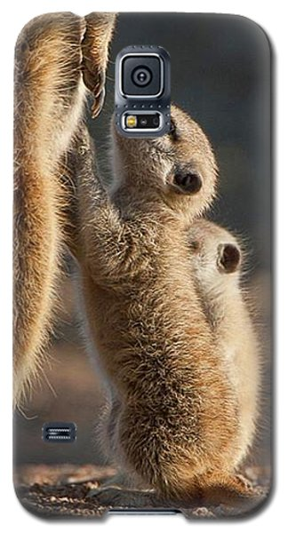 The Baby Is Hungry Galaxy S5 Case by Happy Home Artistry