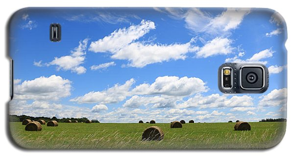 The Bales Of Summer 3 Galaxy S5 Case
