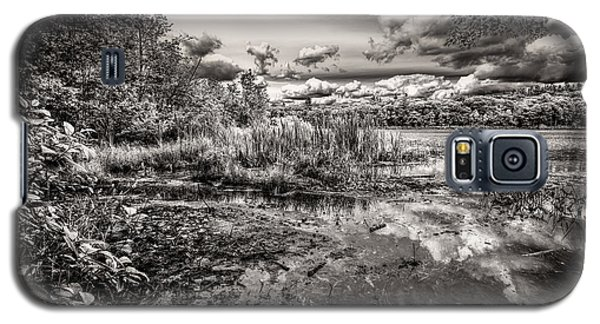 The Basin And Snails Galaxy S5 Case by Bob Orsillo