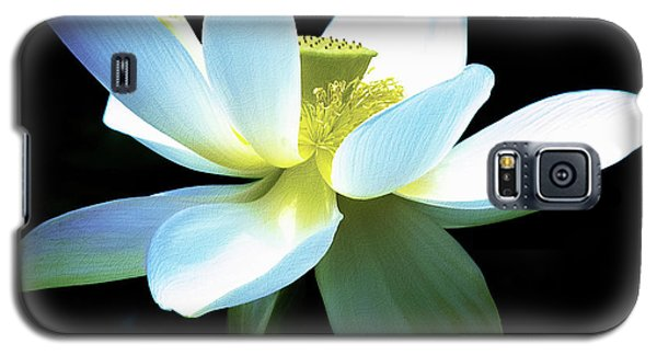 Galaxy S5 Case featuring the photograph The Beauty Of A Lotus by Julie Palencia