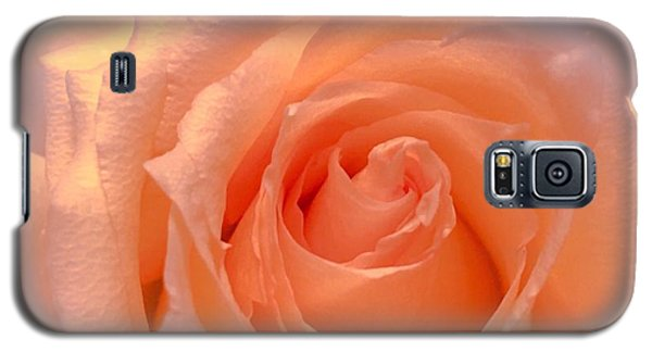 The  Beauty Of A Rose  Copyright Mary Lee Parker 17,  Galaxy S5 Case