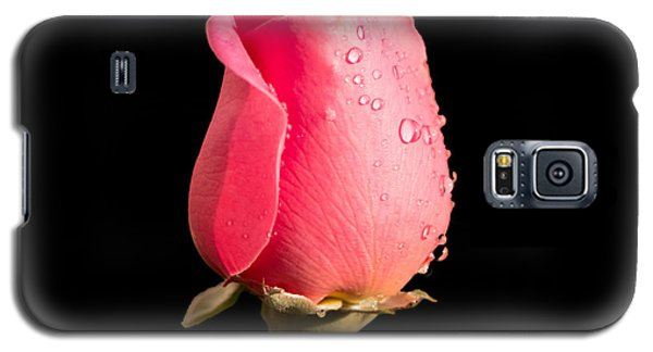 The Beauty Of A Rose Galaxy S5 Case