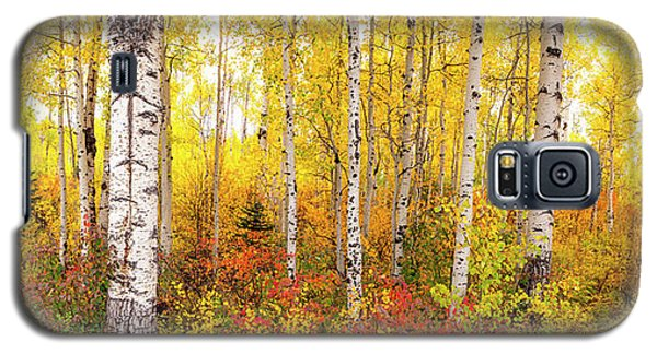 Galaxy S5 Case featuring the photograph The Beauty Of The Autumn Forest by Tim Reaves