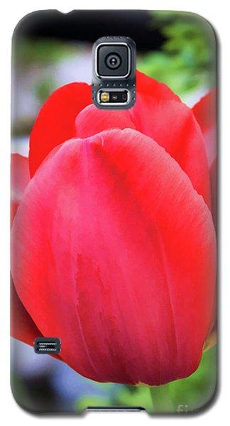 The Tulip Beauty Galaxy S5 Case