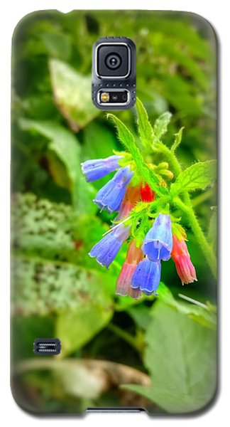 The Bells Galaxy S5 Case