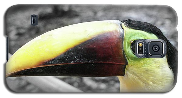 The Big Toucan Galaxy S5 Case