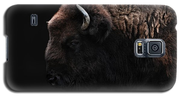 Bison Galaxy S5 Case - The Bison by Joachim G Pinkawa
