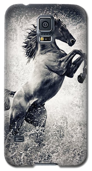 The Black Stallion Arabian Horse Reared Up Galaxy S5 Case