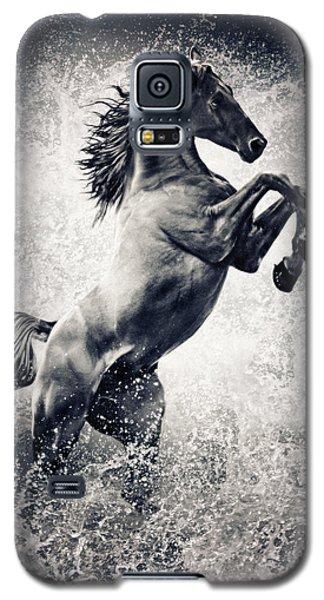 The Black Stallion Arabian Horse Reared Up Galaxy S5 Case