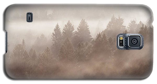 The Blow Of The Forest Galaxy S5 Case by Yuri Santin