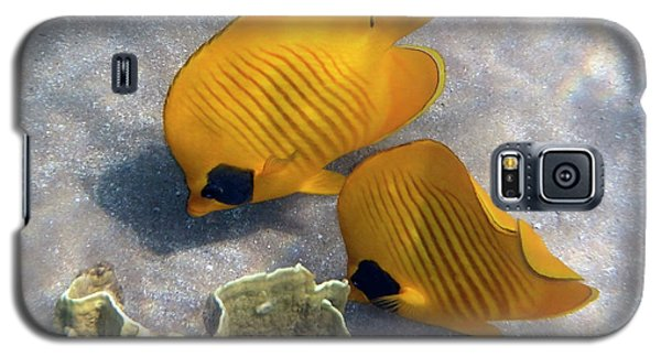 The Bluecheeked Butterflyfish Galaxy S5 Case