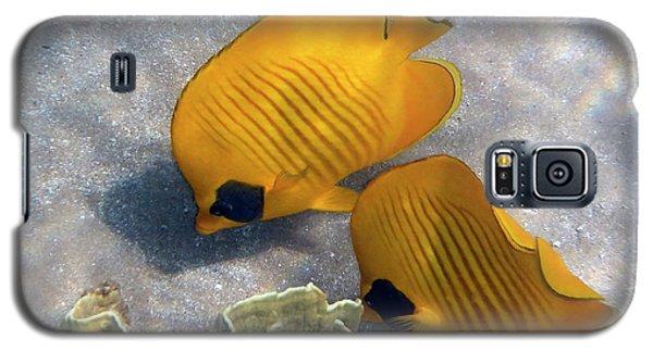 The Bluecheeked Butterflyfish Galaxy S5 Case