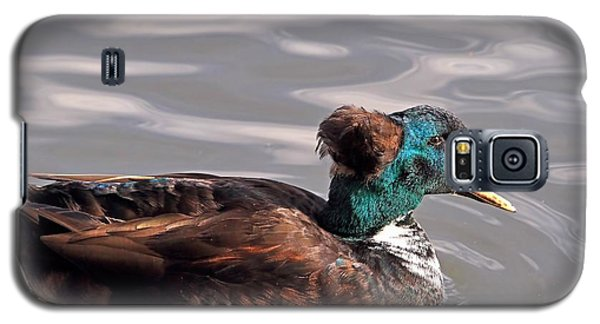 Galaxy S5 Case featuring the photograph The Brown Derby by Donna Kennedy