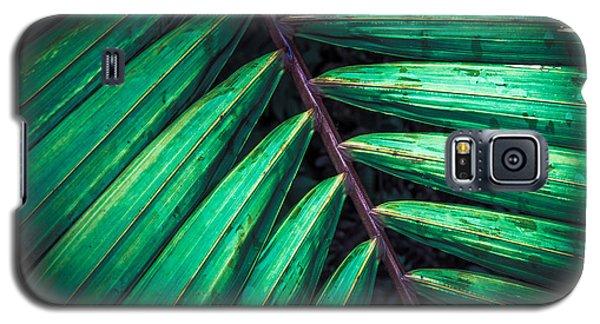 The Brush Strokes Galaxy S5 Case