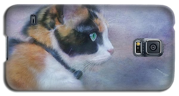 Galaxy S5 Case featuring the digital art The Calico Staredown  by Colleen Taylor