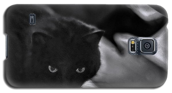 The Cat In The Cafe II Galaxy S5 Case