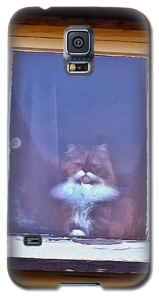 The Cat In The Window Galaxy S5 Case by Anne Kotan