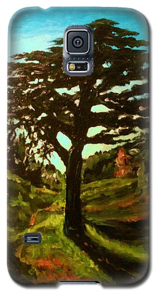 The Cedar Tree Against The Blue Galaxy S5 Case