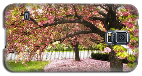 The Cherry Tree Galaxy S5 Case