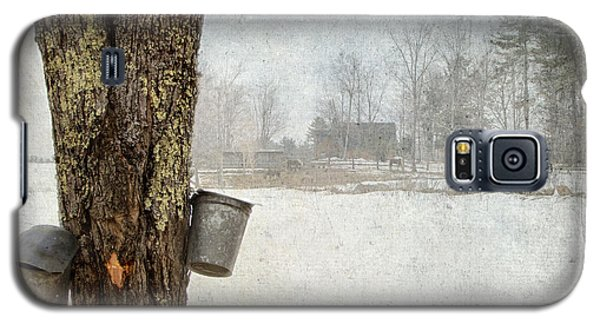 Collecting Sap For Making Maple Syrup Galaxy S5 Case