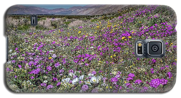 Galaxy S5 Case featuring the photograph The Colors Of Spring Super Bloom 2017 by Peter Tellone
