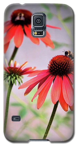 The Coneflower Collection Galaxy S5 Case