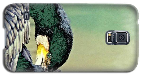 The Cormorant Galaxy S5 Case
