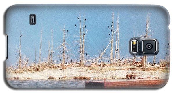 The Cormorants At Deaths Door Galaxy S5 Case