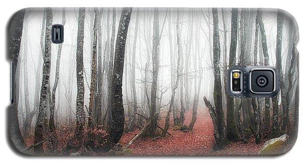 The Corridor Galaxy S5 Case