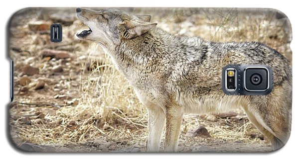 The Coyote Howl Galaxy S5 Case