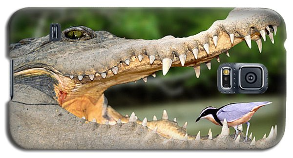 The Crocodile Bird Galaxy S5 Case