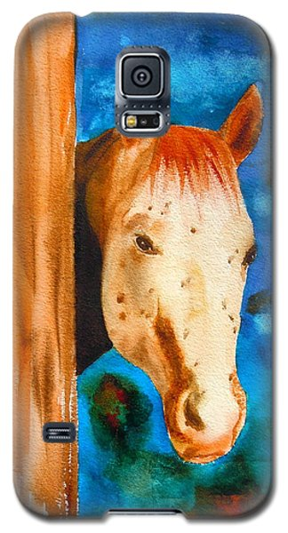 The Curious Appaloosa Galaxy S5 Case by Sharon Mick