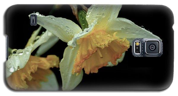 The Daffodil Galaxy S5 Case