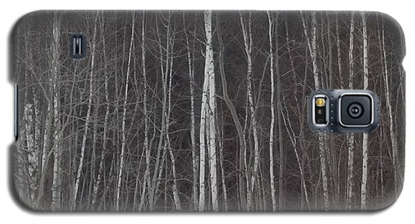 Galaxy S5 Case featuring the photograph The Dark Beyond The Trees by Jackie Mueller-Jones