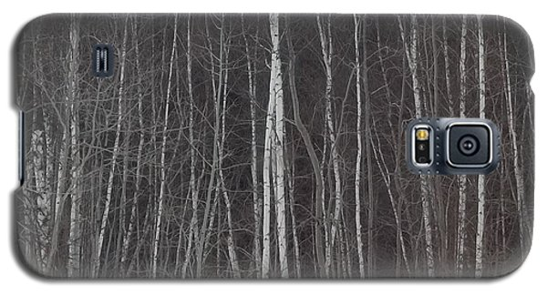 The Dark Beyond The Trees Galaxy S5 Case