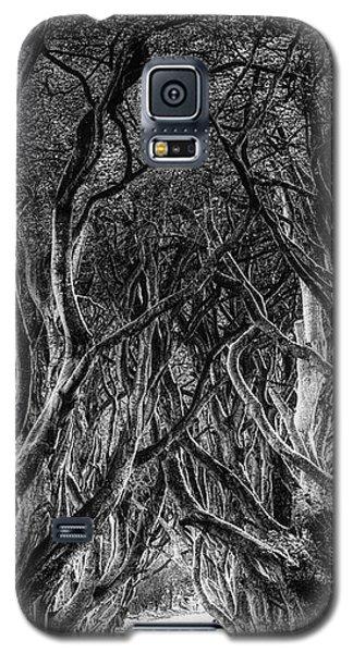 The Dark Hedges Galaxy S5 Case
