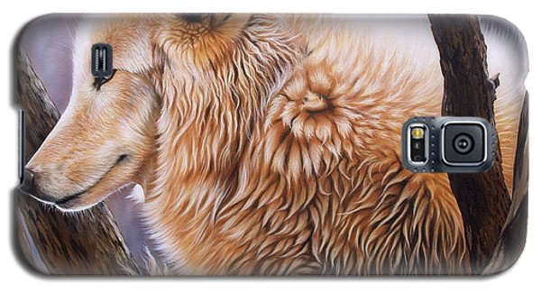 The Daystar Galaxy S5 Case