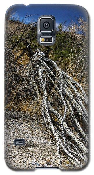 The Desert Sentinel Galaxy S5 Case