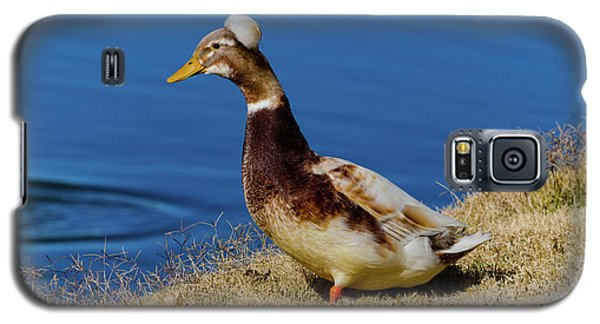 The Duck With The Pillbox Hat Galaxy S5 Case