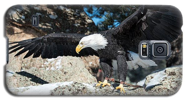 The Eagle Has Landed Galaxy S5 Case