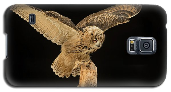 The Eagle-owl Has Landed Galaxy S5 Case