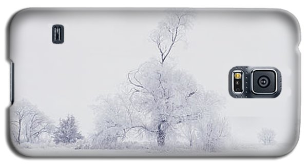 Galaxy S5 Case featuring the photograph The Eldar Tree by Dustin LeFevre