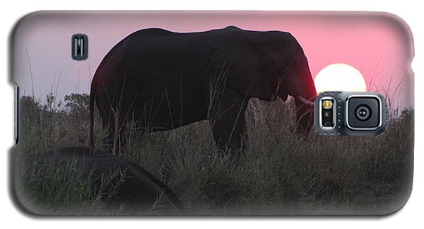 The Elephant And The Sun Galaxy S5 Case
