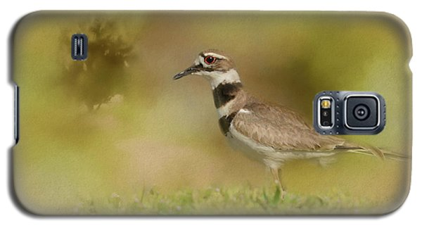 The Elusive Killdeer Galaxy S5 Case by Jai Johnson