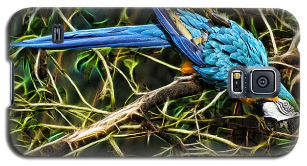 Galaxy S5 Case featuring the photograph The Enchanted Forest by Cameron Wood