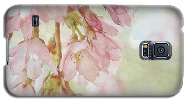 Galaxy S5 Case featuring the photograph The Essence Of Springtime  by Connie Handscomb