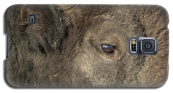 The Eye Of A Bison Galaxy S5 Case